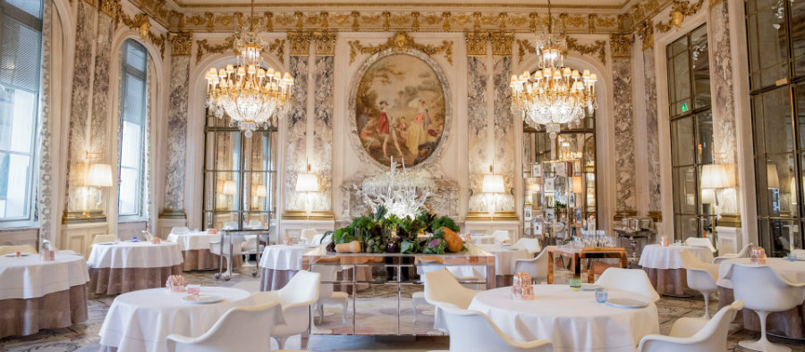city guide City Guide: Top Restaurants In Paris City Guide Top Restaurants In Paris 1